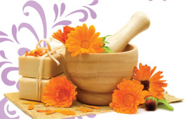 Calendula for your daily skin care regime