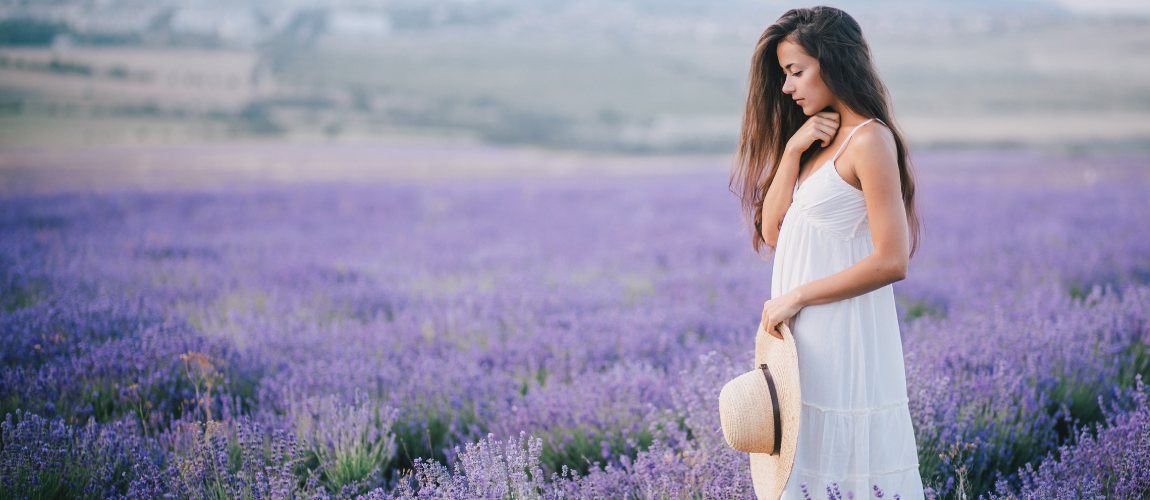lavender-field-background